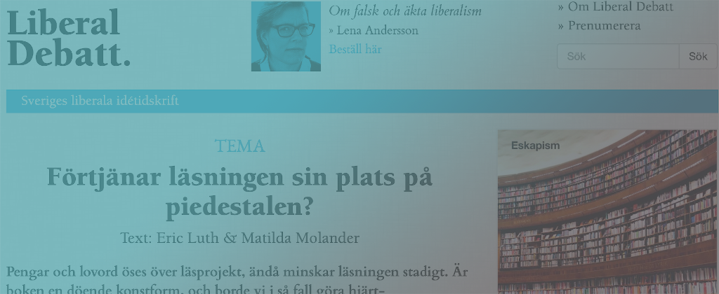 Prof. Dr. Massimo Salgaro interview to swedish paper Liberal Debatt